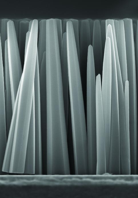 ECOSYM nanofils